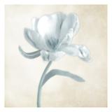 Blue Ivory Blossom 1