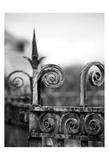 Fence bw 3