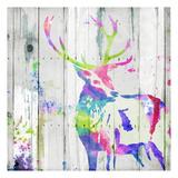 Deer Gaze Colorful