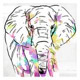 Elephant Head Colorful