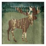 Moose In The Field