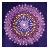 Circular BoHo