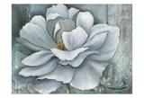 Silken Bloom II Withaar