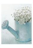Vintage Blue Pot