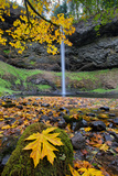 Autumn at South Falls  Silver Falls State Park  Silverton  Oregon