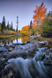 Autumn and Bishop Creek Flow  Eastern Sierras  Bishop California