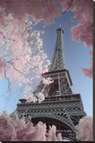Eiffel Tower- Through Spring Trees