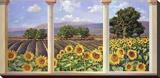 Finestra sui girasoli