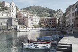 Vernazza Harbor  Cinqueterra  Italy