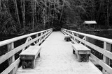 Winter Scene with Wooden Foot Bridge