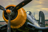 British Fighter Plane Wwii