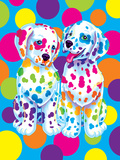 Spotty and Dotty