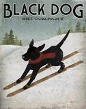 Black Dog Ski Co
