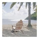 Carribean Dream