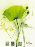 Coquelicot Vert I