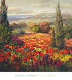 Fields of Blooms
