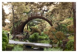 Japanese Bridge 1