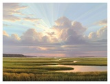 Low Country Splendor
