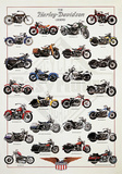 The Harley-Davidson Legend