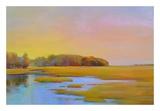 Summer Marsh 2