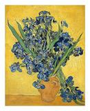 Irises  1890