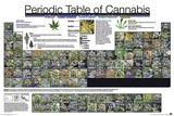 The Periodic Table of Cannabis