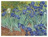Les iris, 1889 Reproduction d'art par Vincent Van Gogh