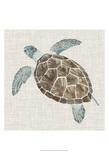 Sea Turtle II Reproduction d'art par Naomi McCavitt