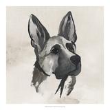 Inked Dogs IV