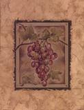 Raisin Fructus