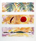 Rising Sun - Falling Coconut
