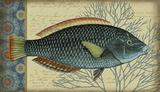Indigo Fish 1