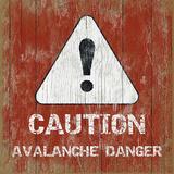 Avalanche 5