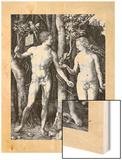 Adam et Eve 1504