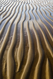 Patterns on wet sandy beach at low tide  Northumberland  England  july