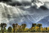 View of mountain range and trees in autumn colour  Grand Teton   Wyoming  USA