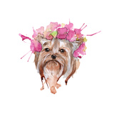 Dog Illustration Yorkie Isolated Watercolor