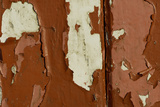 Old wooden door with red paint flaking  Cumbria  England