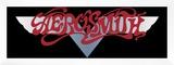 Aerosmith - Dream On Banner 1973
