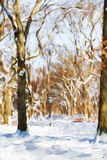 Winter in Central Park III - In the Style of Oil Painting