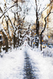 Walking Central Park - In the Style of Oil Painting
