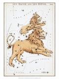 Urania's Mirror  Leo  1825