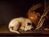 Sleeping Dog  1650