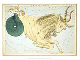 Urania's Mirror  Capricorn  1825