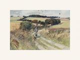 Partridge Shooting - September