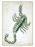 Urania's Mirror  Scorpio  1825