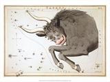 Urania's Mirror  Taurus  1825