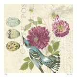 Bird Study 4