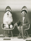 Coneheads Lady and Poodle in Dryers  France
