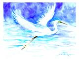 Heron 5